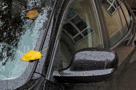 Le scadenze da rispettare in autunno